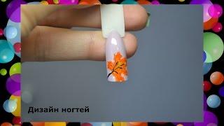 Кленовый листок на ноготках акриловыми красками. Дизайн ногтей.