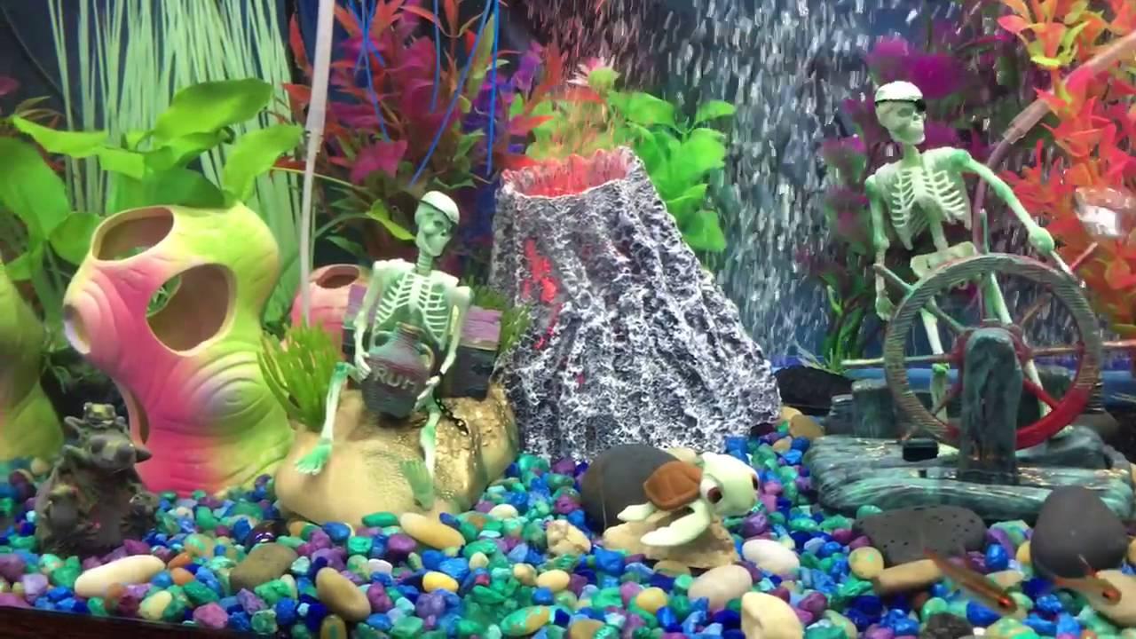 Fish in the tank finding nemo - Finding Nemo Fish Tank