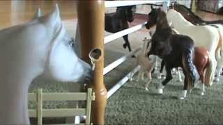 Breyer Horse Movie: The New Horses
