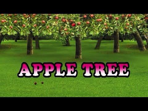 APPLE TREE [Official Karaoke]