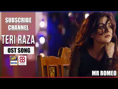 Title Song Of Teri Raza - Ali Sethi | ARY Digital
