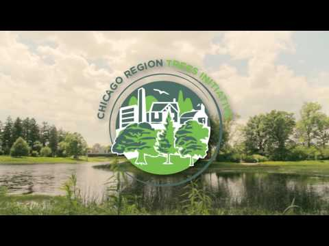 Chicago Region Trees Initiative Supercut