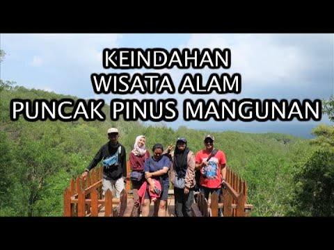 wisata-alam-ke-puncak-pinus-mangunan-yogyakarta-#part1---ifay-kafhi-official