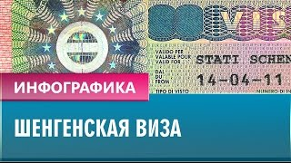 видео выдача виз шенген