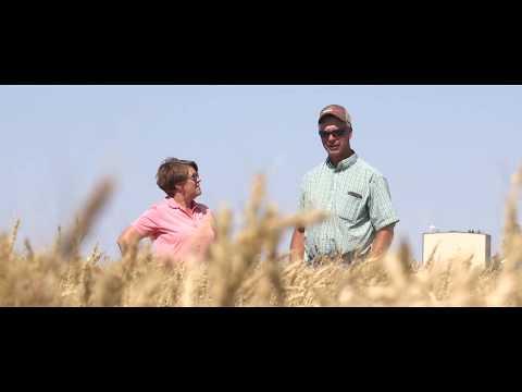 Monsanto BioAg™: Improving Plant Health Through Microbial Solutions