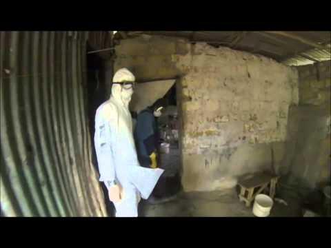 Ebola Virus Outbreak Presentation video