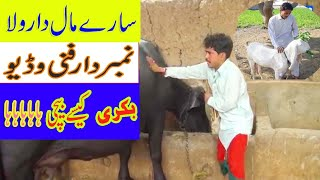 BHAKRI CHOR NUMBERDR 2019 FUNNY AND COMDY VIDEOS