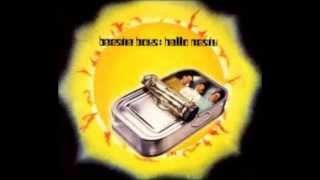 Beastie Boys- Song For The Man