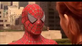 WHO IS THE REAL SPIDERMAN??