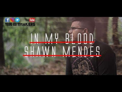 shawn-mendes---in-my-blood