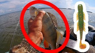 НАШЁЛ❗❗❗ Ловля окуня, судака и щуки на ОВХ.  Рыбалка на джиг с лодки 2018