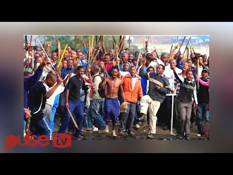 Nigerians react angrily to xenophobic attacks in South Africa I PULSE TV NEWS
