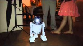 My Pet Robot R2D2