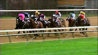 2000 Breeders' Cup Classic