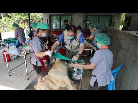 โครงการประชาสัมพันธ์ สัตว์ปลอดโรค คนปลอดภัยจากโรคพิษสุนัขบ้า