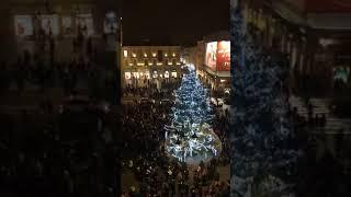Parma - Cerimonia inaugurale l'albero di Natale 2017