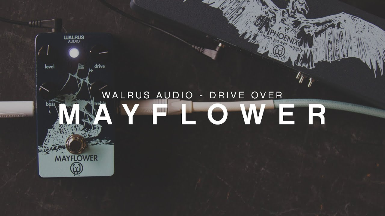 walrus audio mayflower driveover youtube. Black Bedroom Furniture Sets. Home Design Ideas