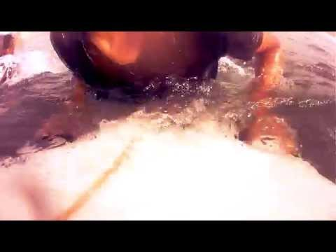 surf monica