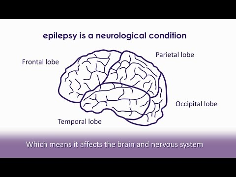 What Is Epilepsy? | Epilepsy Society