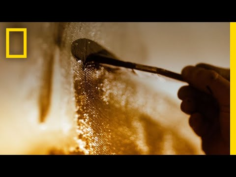 Genius: Picasso - Trailer | National Geographic