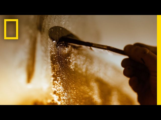 Antonio Banderas se convierte en Picasso