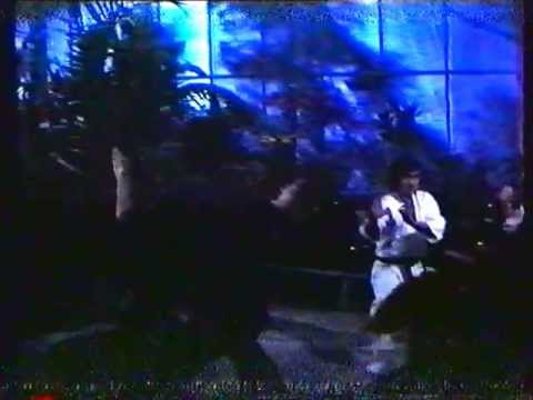 Game of Death: Greenhouse Fight Casanova Wong vs Tong Lung