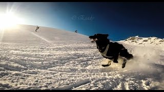 Clash Folly ~ ski time
