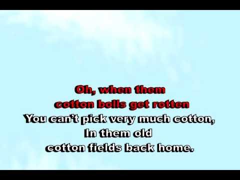 Cotton Field - Creedence (karaoke)