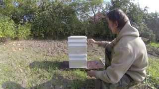 видео Сушильный шкаф «Дачник-4»