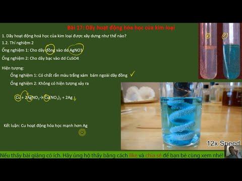 Bài 17 – Dãy hoạt động hóa học của kim loại | Hóa học 9 | Hóa học THCS 89