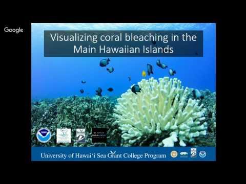 Sundays at the Bay - Backyard Ecosystems - Outreach Talk #3
