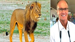 CECIL THE LION VS DENTIST