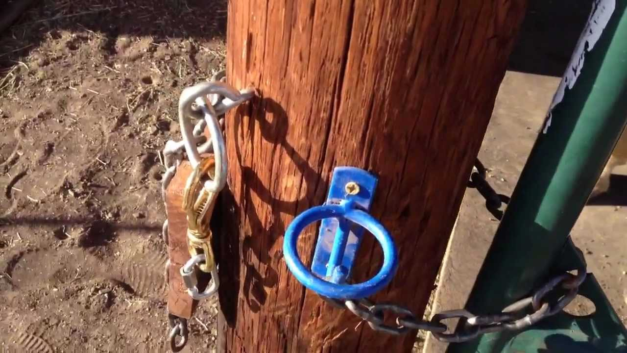 One Hand Horse Gate Lock Latches Amp Snaps Buddy