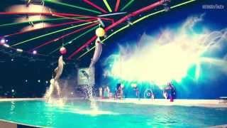 Awesome Dolphin Show in Dubai Dolphinarium