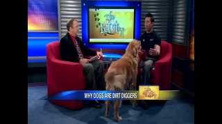 Dog-proofing Your Yard For Spring - News12 New Jersey The Pet Stop Feb 14, 2013 Part 1