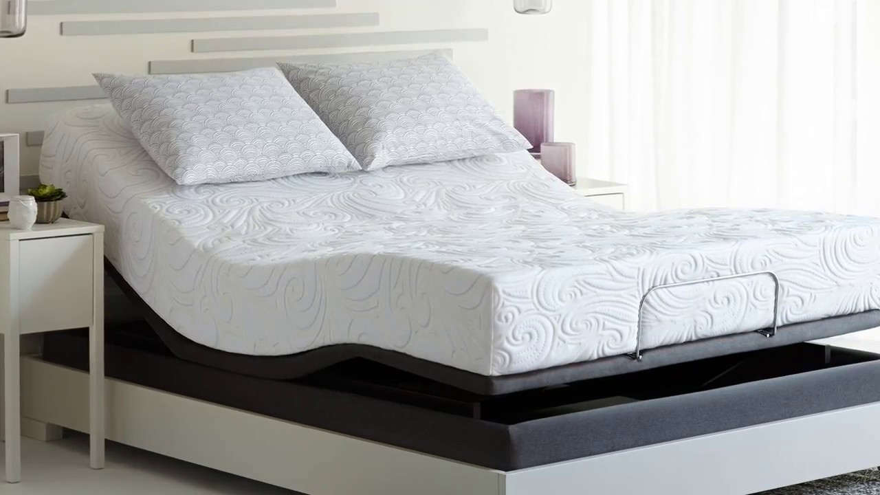 Sealy Optimum Mattresses Adjule Bases Bed Rolls You
