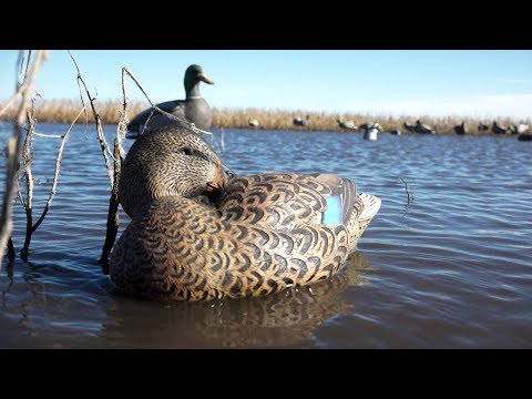 Killer Decoy Spreads: Smart Season-Long Strategies For Duck Hunters