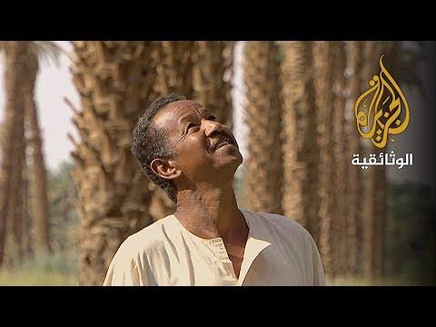 عمتكم النخلة - السودان