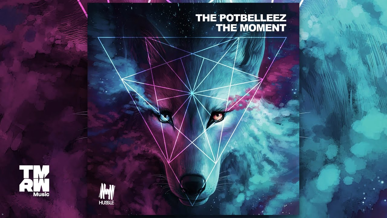 Download The Potbelleez - The Moment