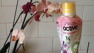 6 нельзя в подкормке орхидеи. Какие орхидеи можно подкармливать.