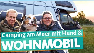 Buying a used motorhome - first camping holiday by the sea | WDR Reisen