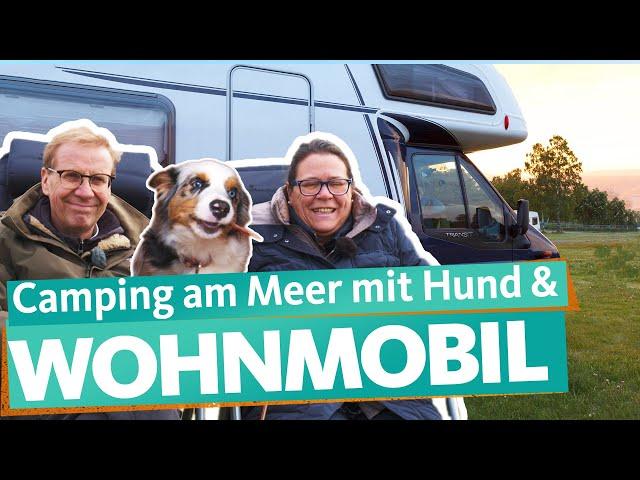 Gebrauchtes Wohnmobil kaufen – Erster Camping-Urlaub am Meer | WDR Reisen