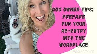 Dog Owner Tips: How To Prepare For Your Re-Entry Into The Workplace After COVID -19