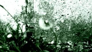 BÖSePfERDE - Der Atomkrieg