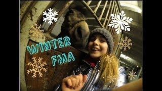 Lenispferdewelt - FMA zur Winterzeit ♥