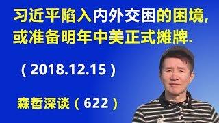 """习近平陷入""""内外交困""""的困境,或准备明年中美正式摊牌.(2018.12.15)"""