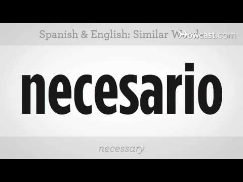 Similar Words In Spanish & English   Spanish Lessons