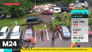 Москвичей предупредили о грозе и сильном ветре в ближайшие часы - Москва 24