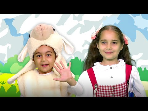 Mary Had a Little Lamb | Nursery Rhymes and Kids Songs
