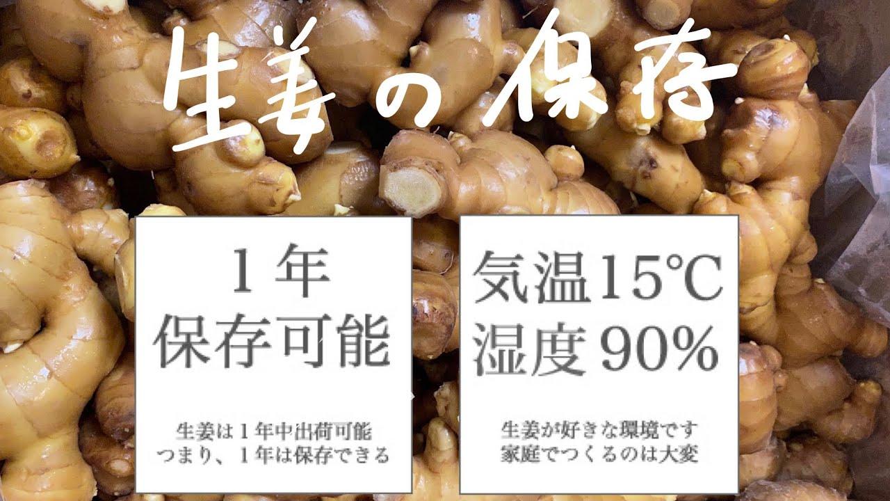 生姜 の 保存